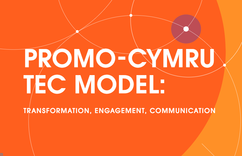 Tec model for digital youth work article